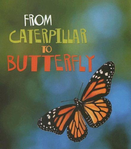 9781403478641: From Caterpillar to Butterfly (How Living Things Grow)