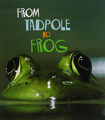 9781403478689: From Tadpole to Frog (How Living Things Grow)