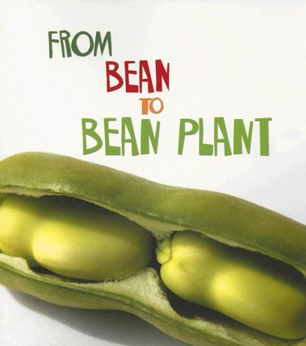 9781403478702: From Bean to Bean Plant (How Living Things Grow)