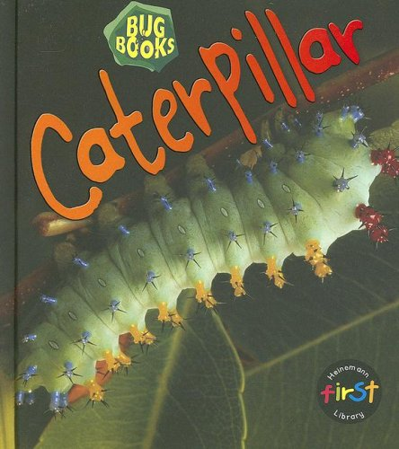 9781403482945: Caterpillar (Bug Books)