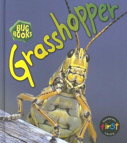 9781403482976: Grasshopper (Bug Books)