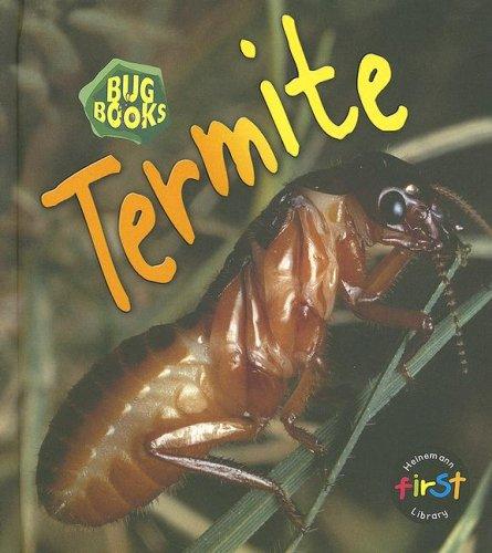 9781403483027: Termite (Bug Books)