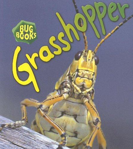 9781403483102: Grasshopper (Bug Books)