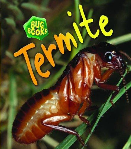 9781403483157: Termite (Bug Books)
