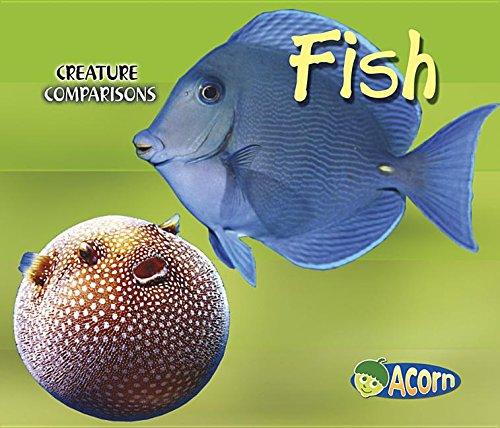 9781403484642: Fish (Creature Comparisons)