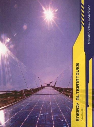 9781403487360: Energy Alternatives (Essential Energy)