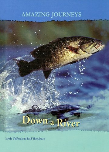 9781403487896: Down a River (Amazing Journeys)