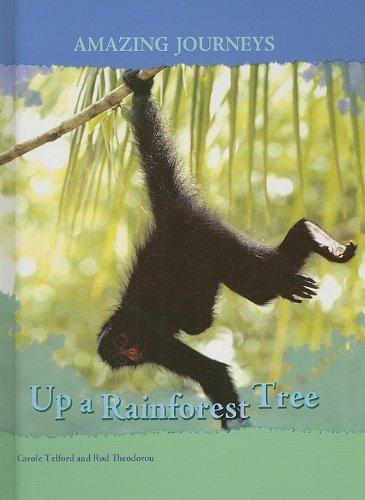 9781403487933: Up a Rainforest Tree (Amazing Journeys)