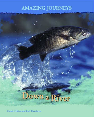 9781403487964: Down a River (Amazing Journeys)