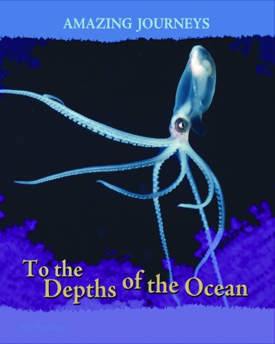 9781403487995: To the Depths of the Ocean (Amazing Journeys)