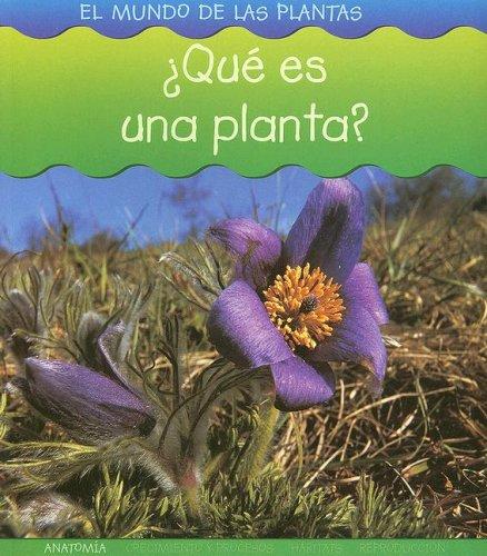 9781403490742: ¿Qué es una planta? (El mundo de las plantas) (Spanish Edition)