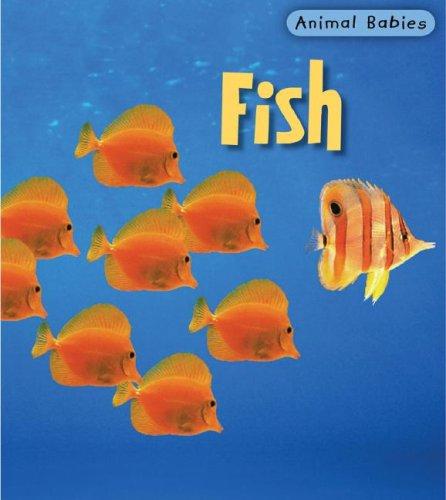 9781403492432: Fish (Animal Babies)