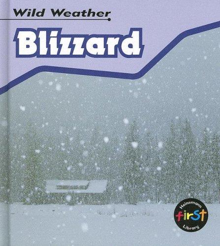 9781403495754: Blizzard (Wild Weather)