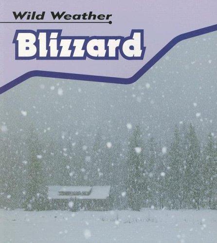 9781403495846: Blizzard (Wild Weather)