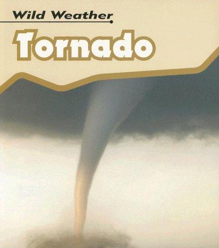 9781403495907: Tornado (Wild Weather)