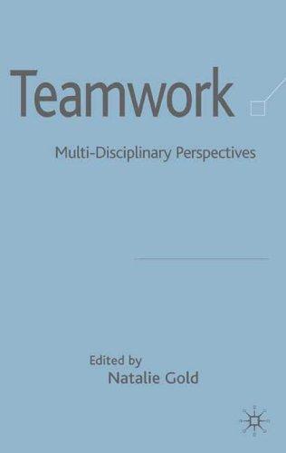 9781403933904: Teamwork: Multi-Disciplinary Perspectives