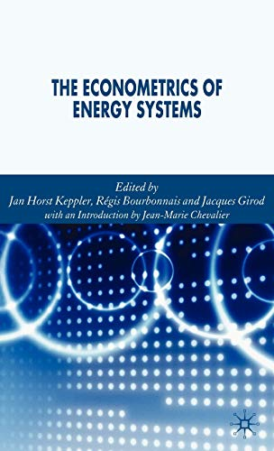 9781403987488: The Econometrics of Energy Systems