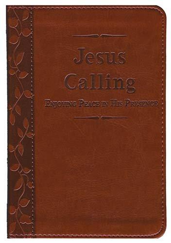 9781404114098: Jesus Calling