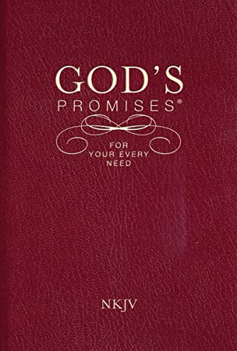 9781404186651: God's Promises for Your Every Need, NKJV