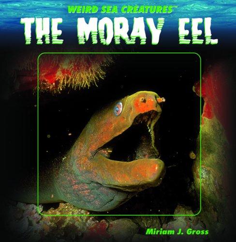 9781404231894: The Moray Eel (WEIRD SEA CREATURES