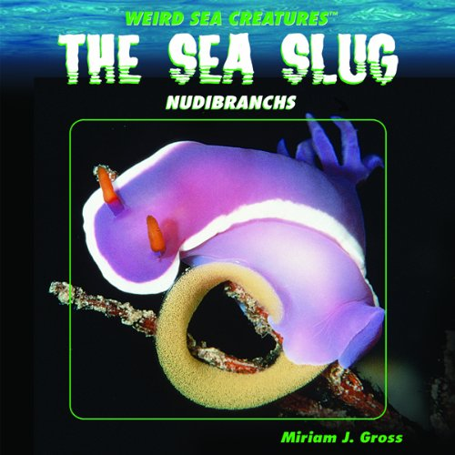 The Sea Slug: Nudibranchs (Weird Sea Creatures): Gross, Miriam J.