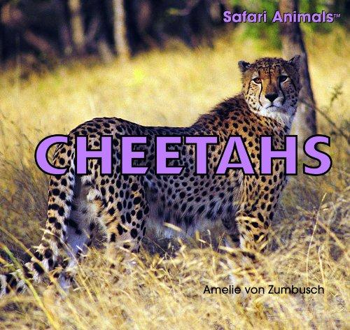 9781404236141: Cheetahs (Safari Animals)