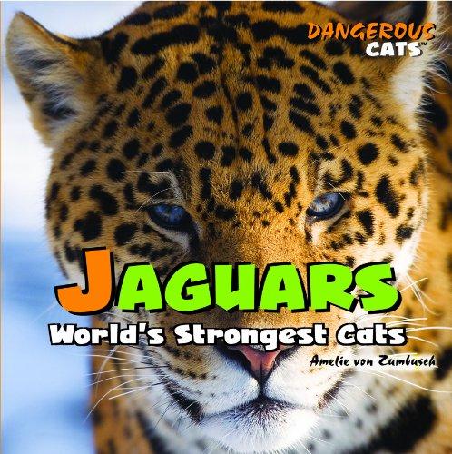 9781404236288: Jaguars: World's Strongest Cats (Dangerous Cats)