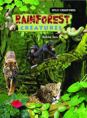 Rainforest Creatures (Wild Creatures)