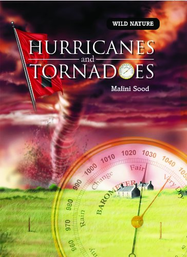 Hurricanes and Tornadoes (Wild Nature): Sood, Malini