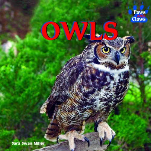 Owls (Paws and Claws): Miller, Sara Swan