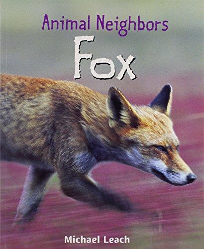 9781404245693: Fox (Animal Neighbors)