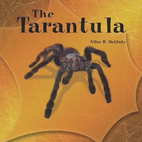 9781404255678: Tarantula (The Library of Spiders)