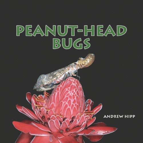 9781404255692: Peanut-Head Bugs