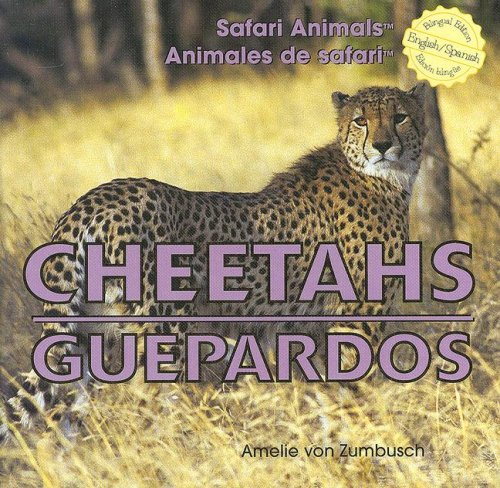 9781404276048: Cheetahs/Guepardos (Safari Animals / Animales De Safari)