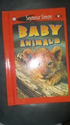 9781404614987: Baby Animals (See More Readers, Level 1)