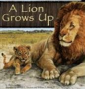 9781404809857: A Lion Grows Up (Wild Animals)