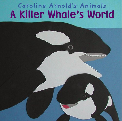 9781404813212: A Killer Whale's World (Caroline Arnold's Animals)