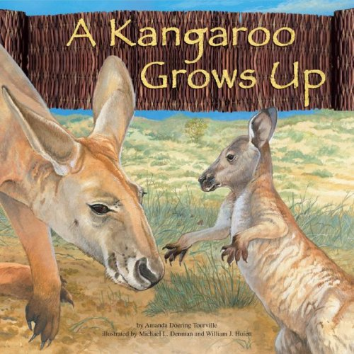 A Kangaroo Grows Up (Wild Animals (Picture: Doering Tourville, Amanda