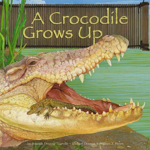 9781404835634: A Crocodile Grows Up (Wild Animals)