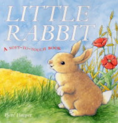 9781405021722: Little Rabbit: A Soft-to-Touch Book