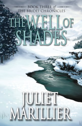9781405041102: The Well of Shades