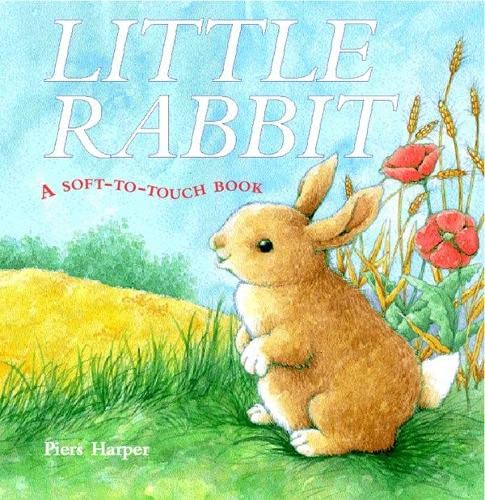 9781405047845: Little Rabbit: A Soft-to-Touch Book