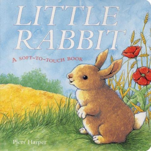 9781405054386: Little Rabbit