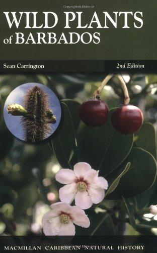 9781405094078: Wild Plants of Barbados (MacMillan Caribbean Natural History)