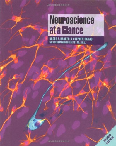 9781405111249: Neuroscience at a Glance