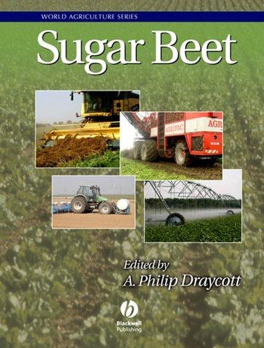 Sugar Beet (Hardback)