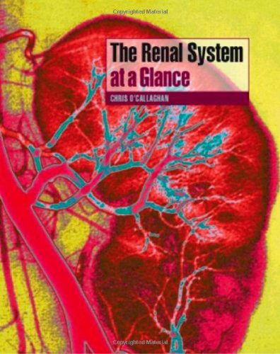 9781405131360: The Renal System at a Glance