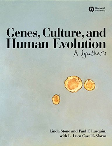 9781405131667: Genes, Culture, and Human Evolution: A Synthesis