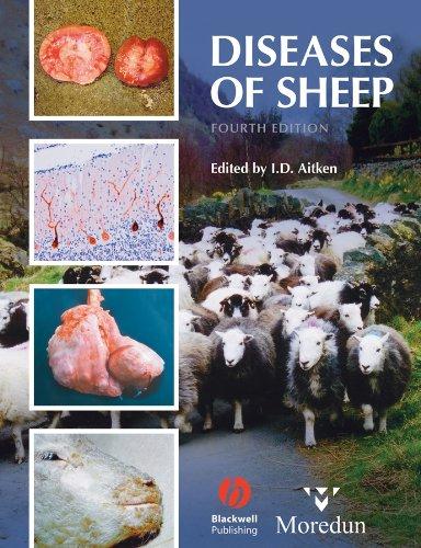 9781405134149: Diseases of Sheep