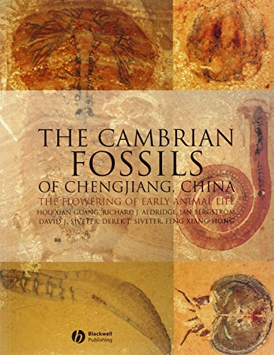 9781405167192: The Cambrian Fossils of Chengjiang, China: The Flowering of Early Animal Life